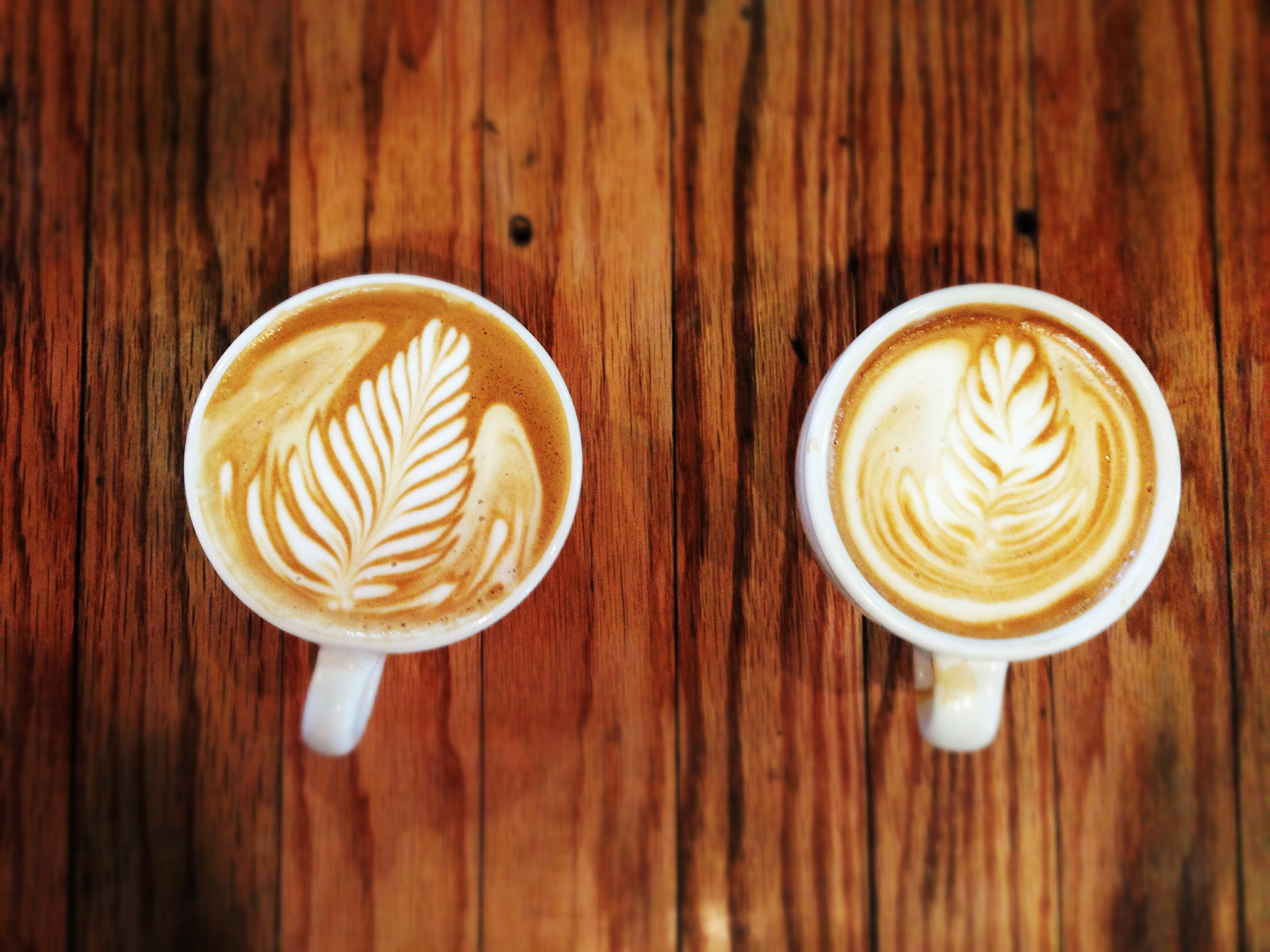 how to start a nonprofit coffee shop