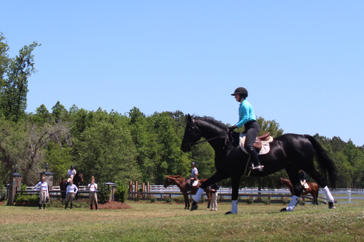 Scad Hosts Anrc Equestrian Competition Scad District