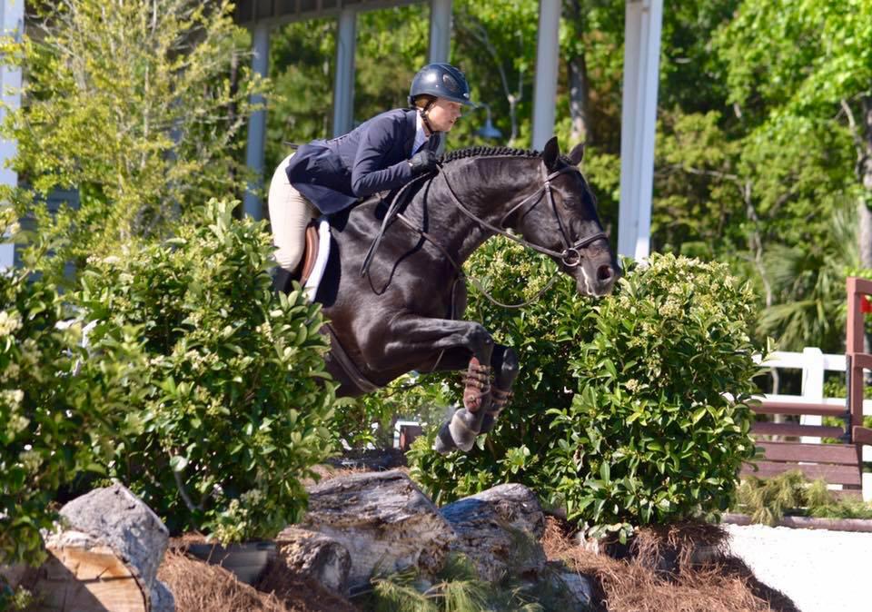 District Sports Spotlight Scad Savannah Equestrian Scad