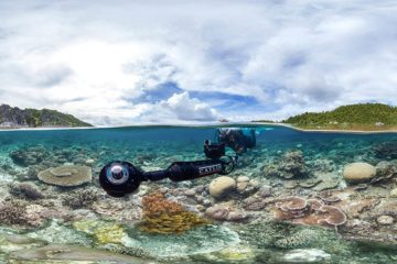 chasing-coral-review-netflix-documentary-savannah-film-festival